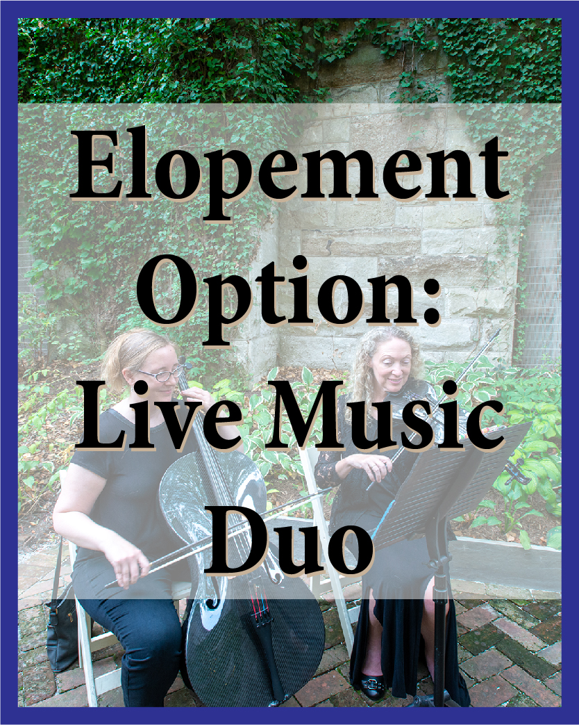 Live music adds special something to your wedding celebration, and it sounds great at Chase Court! You have your choice of harp, guitar, violin, viola, cello, bass, or flute. (Want something else? Ask!)