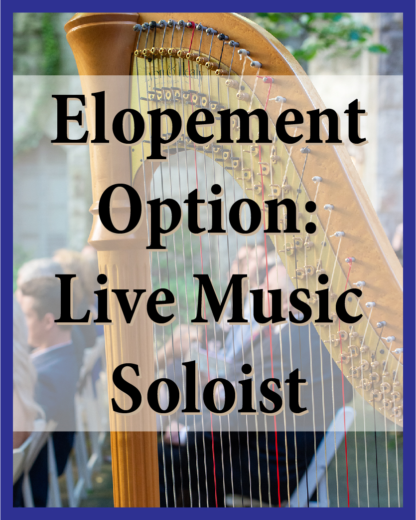 Live music adds special something to your wedding celebration, and it sounds great at Chase Court! You have your choice of harp, guitar, violin, cello, or flute. (Want something else? Ask!)