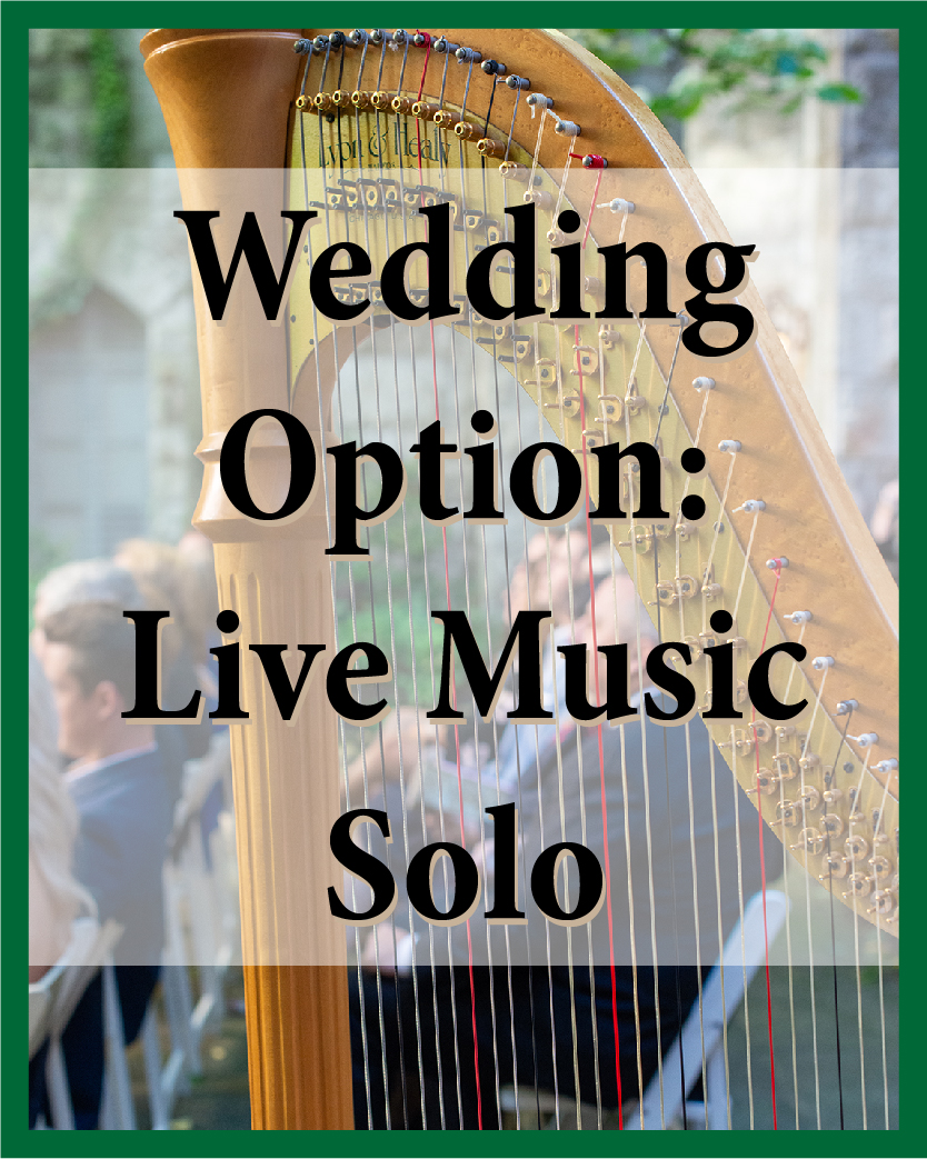 Harp, violin, voice, cello, flute, or guitar for your ceremony and cocktail hour.