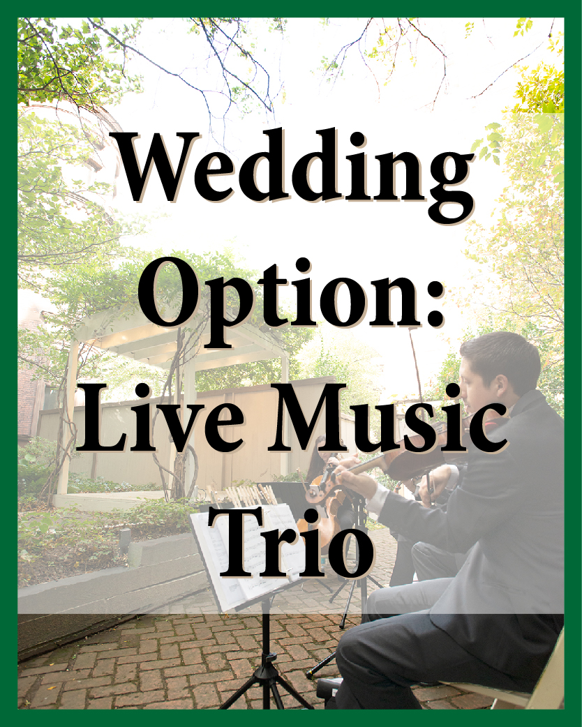 Violin, voice, viola, cello, bass, flute, or guitar for your ceremony and cocktail hour (choose three).